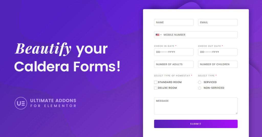 Design Stylish Forms Using The Caldera Forms Styler